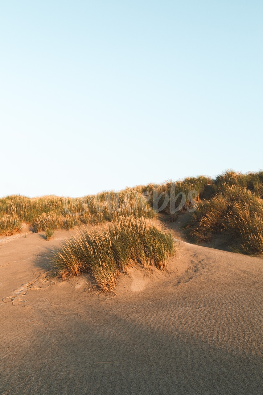 Evening at the Beach - Series - 02