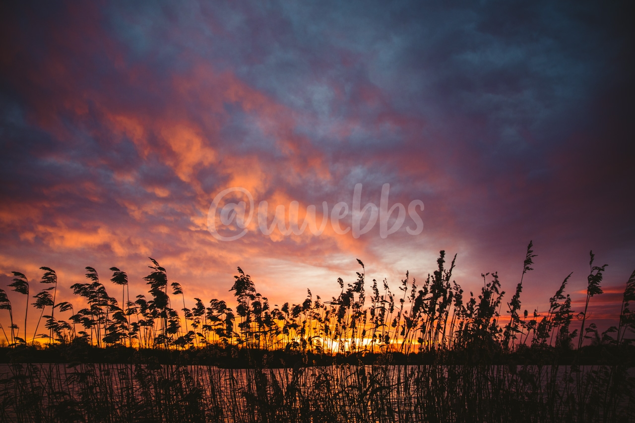 Winter Sunrise - Series - 01