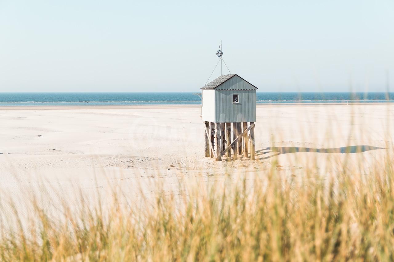 Beach House - H