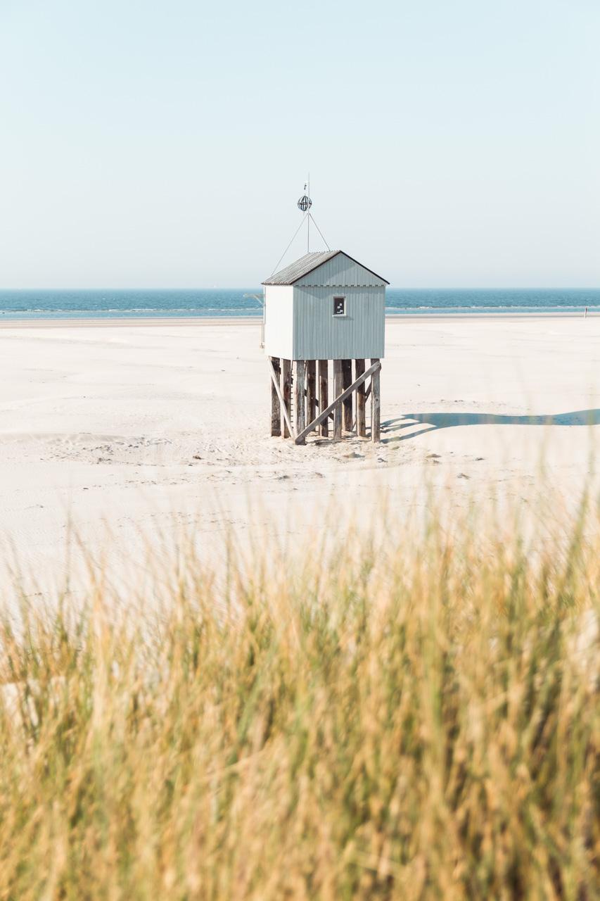 Beach House - V